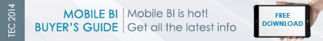 2014 Mobile BI Buyer's Guide