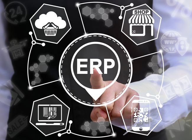 Erp System Examples Tec